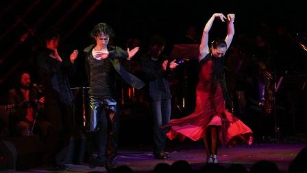Flamenco pair1